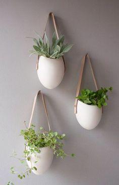 Hängende Zimmerpflanzen und Balkonpflanzen - umweltgerechtes Haus
