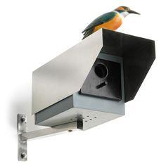 Fuglekasse der ligner overvågningskamera