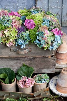 Fun and colorful hydrangea cut flower display would be great for a party!