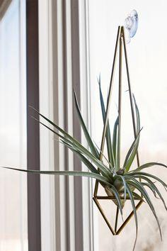 Brass Himmeli Hanging Planter / Hanging Mobile Prism no. 1 / Geometric Ornament / Air Plant Hanger
