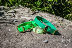 Waterproof Dog Collar in Bright Green by goodwolfdesignco on Etsy