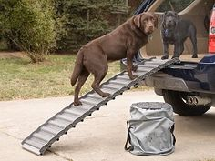 Our Roll Up Dog Ramp features a patented roll-out, roll-up design that reduces stress on your pets' legs and joints, making it easier and safer to climb into cars or up stairs. This ramp is the perfect solution for dogs of any age, particularly those with Dog Ramp For Truck, Ramps For Trucks, Small Trucks, Car Ramp, Dog Stairs, Ramp Stairs, Pet Barrier, Up Dog, Dog Care