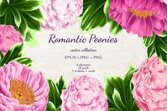 This is vector floral collection in pink colors. Included high res PNG, JPEG and EPS 10 files with peonies, leaves, card templates and frames. Graphic Wallpaper, Butterfly Watercolor, Free Photoshop, Birthday Design, Free Graphics, Free Illustrations, Design Bundles, Card Templates, Rose