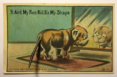 Vintage 1911 Postcard Schmidt Bros & Co Bulldog With Spring Metal Tail Unposted