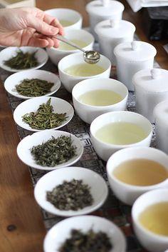Tea tasting | by nikosan - illustration & art of tea
