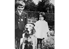 Young actress Elizabeth Taylor stands with her brother and their dog in a garden, circa 1930's.