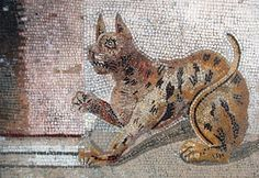 Cat mosaic from Pompeii, National Archeological Museum, Naples. photographh by Massimo Finizio. Courtesy Wiki Commons