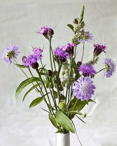 Wild Flowers Still Life
