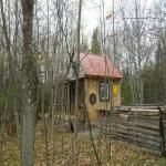 Tiny Hand-Built Log Wood Home