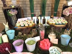 forest candy bar with hand painted name, toadstool cupcakes and animals.