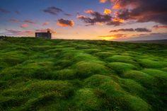 Green Land | Ireland © Christian Ringer www.christianringer.photography