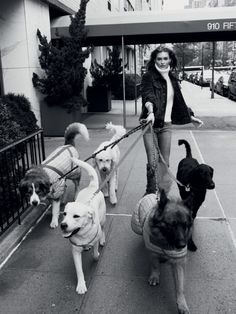 I am a dog person so it's no surprise that I'm smitten with this story in August Vogue Paris.