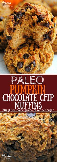 Paleo pumpkin chocolate chip muffins. Grain-free never tasted better! These easy and super moist Paleo pumpkin chocolate chip muffins will satisfy your pumpkin spice cravings. Made with simple and healthy ingredients. Gluten-free, dairy-free, grain-free and no refined sugar. #paleomuffins #glutenfreemuffins #pumpkinmuffins