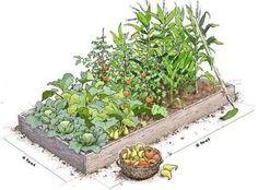 garden bed: 20 тыс изображений найдено в Яндекс.Картинках