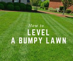 How To Level a Bumpy Lawn (Causes and Fixes)- Sumo Gardener - - Learn how to level a lawn so your lawn is aesthetically pleasing. Msot importantly is levelling your lawn is determining what is causing the bumps, dips and sags to prevent the cause. Home Landscaping, Front Yard Landscaping, Landscaping Software, Sumo, Leveling Yard, Reseeding Lawn, Jardiniere Design, Lawn Repair, Green Lawn
