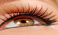 Eyelashes and Eyebrows Perfect