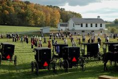 Amish Country in Ohio   (Photo by James Williamson)  We've actually been stuck in an Amish buggy traffic jam!