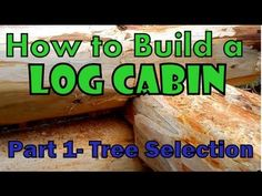 18 Best Log Cabins (Building / Living In One)    images in 2016