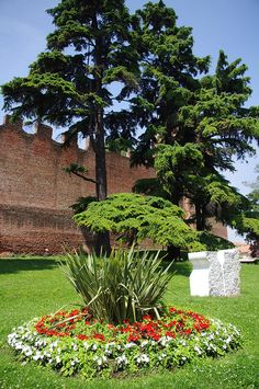 Castelfranco Veneto, Italy, province of Treviso