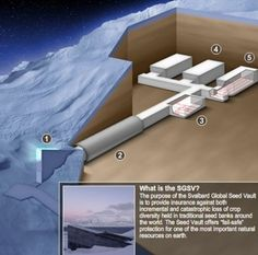 Le Bunker de l'Apocalypse (Svalbard Global Seed Vault)