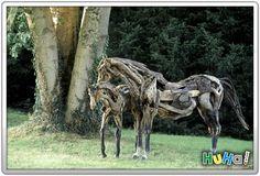 Frequência X: Incríveis esculturas de cavalos em madeira