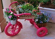 Paint an old tricycle and turn it into a great planter...