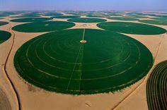 European-American blog: Water Grabbing: How Saudi Arabia is Growing Wheat ...