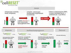 Cellreset-tel a fogyás Wellness, Lifestyle, Fitness, Rest