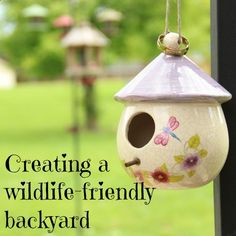 Creating Wildlife-Friendly Backyards- What kind of wildlife do you want to attract? Here are some tips and ideas to get your family started.