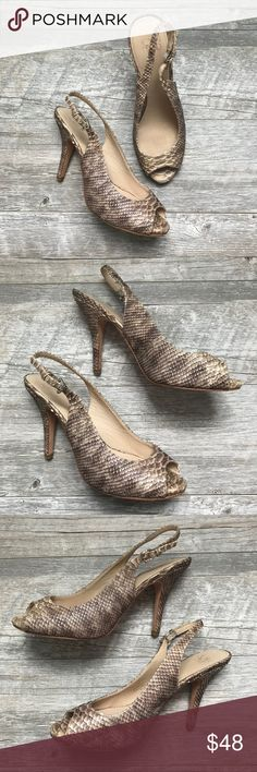 [Joan & David] Snakeskin Slingback Heels Snakeskin sling back heels from Joan & David.  Size 7.5.  There is only a little wear on the heels and the elastic is starting to wear near one clasp.  There is still plenty of life in these.  These are beautiful with dresses, skirts, shorts, jeans, pants, and the neutral color makes them a gorgeous staple! Joan & David Shoes Heels