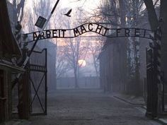 Honor those who perished at Auschwitz-Birkenau and other concentration camps