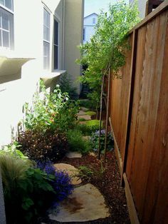 Good choice of plants and plant placement for side yard or small space garden. Most of the plants are where they will catch the most sun (in this case against the side of the house): standard-type plants have been bought to catch sun on top of the fence and take up minimum room and allow maximum walking space