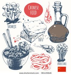 Chinese food in the sketch style. Main course and snacks. Asian traditional products. Vector illustration of ethnic cooking: noodles, soy sauce, tofu, shimeji, enokitake.