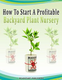 Backyard Plant Nursery Herbs Five Questions You Must Ask Before Starting A Backyard Plant