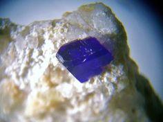 Henmilite sur Olshanskyite Fuka Mine, Bitchu-cho, Takahashi,Präfektur Okayama,Region Chugoku, Insel Honshu, Japan Taille=6 mm