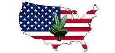 *We offer safe and discreet overnight ######## (24/h) to clients within the US, and 3-4 business days ######## to clients in out of USA.  Grade AA++ cannabis strains, cannabis oil for affordable prices. Get THE BEST FOR LESS. Superb quality medical marijuana for your stress relief, chronic pain.  TO PLACE YOUR ORDER GOto: https://www.realweedshop.com/