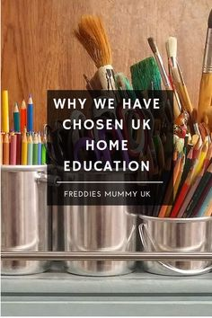 Why we have chosen UK home education #ukhomeeducation #ukhomeschooling #homeschooling #homeeducation