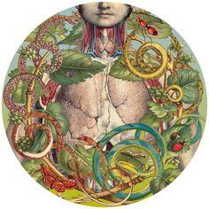 Ciencias Naturales series by Juan Gotti