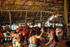 Baile tradicional Embera en la Reserva del rio Chagres Panamá.  #quedadaminube #fitur2017 #travel #traveling #panama #indigenous #wanderlust #indigena #women #dance #baile #tribu #flower #flores #viajar #viaje #picoftheday #travelphotography #lifestyle #travelgram #love #instatravel #viajeros #amor #amazing #culture #couple #couples