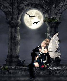 Fairy nights.