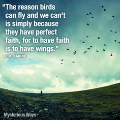 Faith gives you wings... #JMBarrie #quotes #birds #wings #faith #hope #takeflight #inspiration #mysteriousways