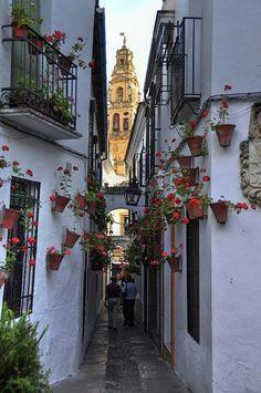 アンダルシアの狭い裏路地 - スペイン