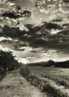Path Light And Shadow, Shadows, Paths, My Photos, Country Roads, Darkness, Walkways