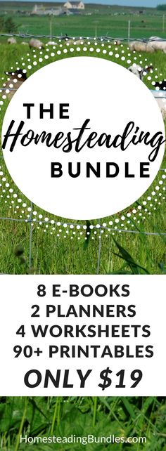Help for your homestead! Ebooks, planners, worksheets and printables to help you on your homesteading journey!