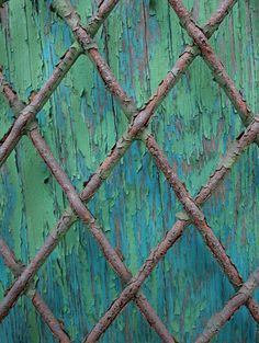 Wire fence love this!