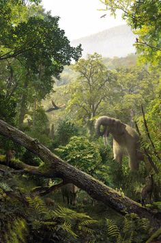 Extinct giant flying squirrel sheds light on the evolution of the gliding rodents Prehistoric Wildlife, Prehistoric World, Prehistoric Creatures, Wildlife Art, Primates, Mammals, Flying Squirrel, Jurassic Park World, Extinct Animals