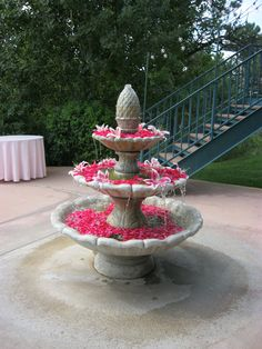Floating pink petals and Stargazer lilies in stone fountain