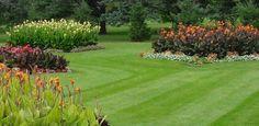 Putting Together A Beautiful Lawn Design - YardMasterz.com