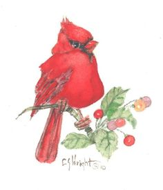 """This 5"""" x 5"""" original watercolor is one of many birds with flowers painted by Carolyn Shores Wright over the years."""