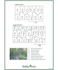 Read these 15 easy gardening tips and hacks so that you can have a garden that is lush with produce. Gardening is fun when you know how to do it right! Landscape Borders, Garden Landscape Design, Garden Borders, Home Flowers, Wild Flowers, Landscaping Around Deck, Landscaping Ideas, Garden Insects, Cottage Garden Plants